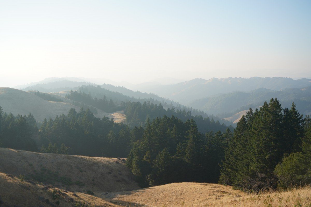 Things To Do in Northern California This Summer
