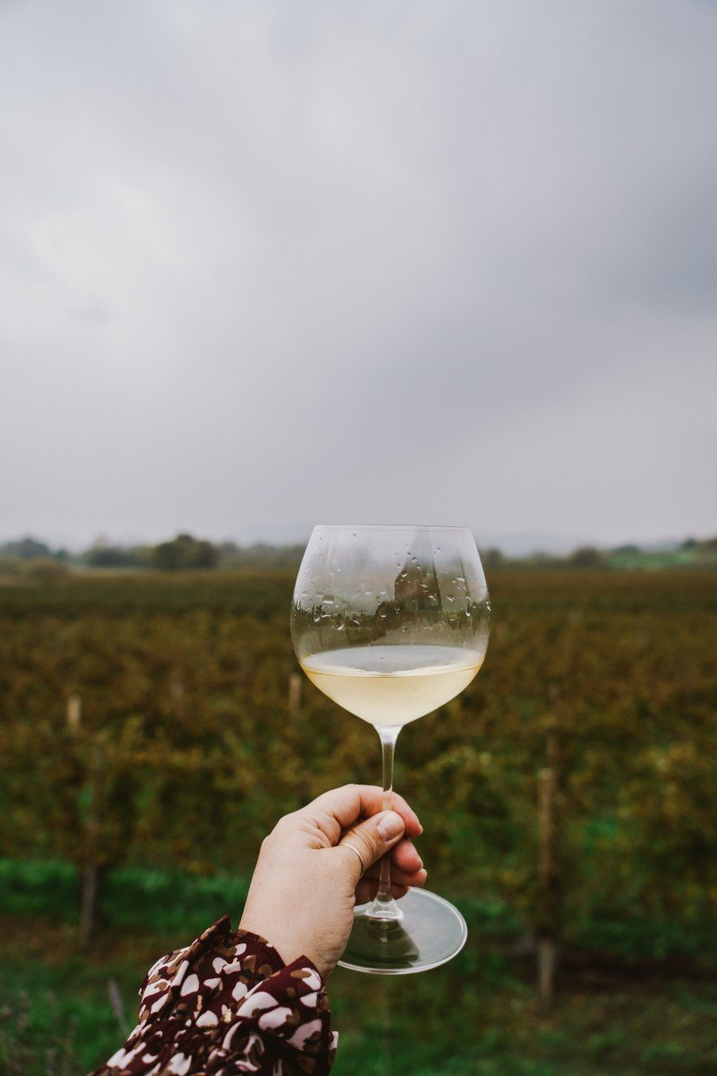 Slovenian Wine and Why It Should Be on Your Radar
