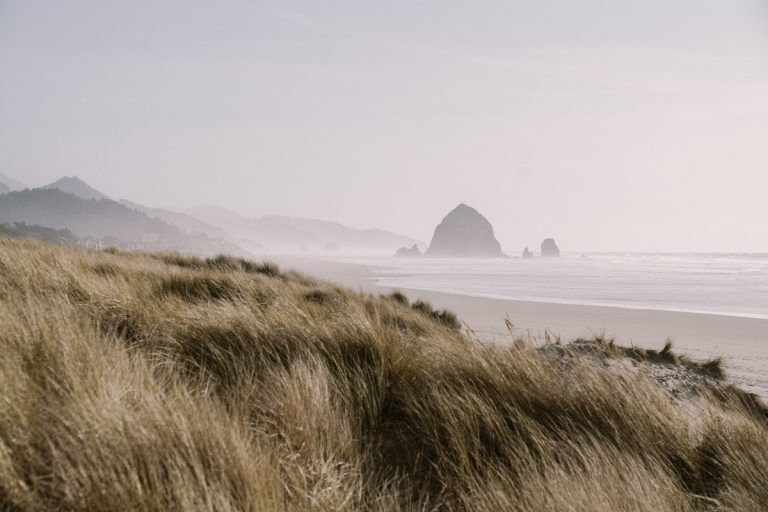 Photos From the Tillamook to Cannon Beach on the Oregon Coast