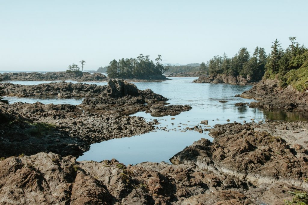 What to Do In Tofino