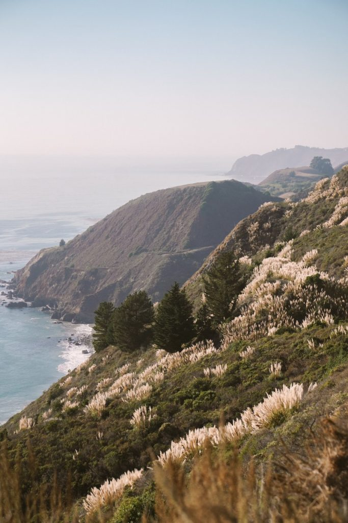 The Complete Extended Travel Guide to Big Sur, California