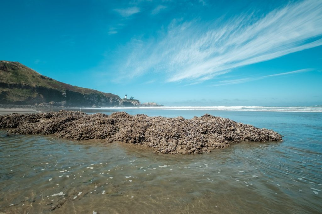 The Best Oregon Coast Towns and Attractions